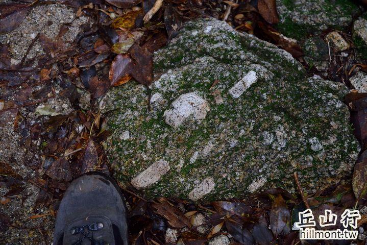花崗岩中的巨大正長石結晶
