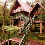 Mesilau Nature Resourt
