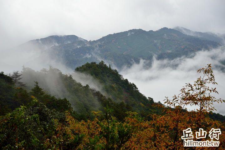 小雲取越的櫻茶屋跡眺望良好