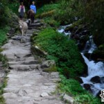 Inca Trail D2-1